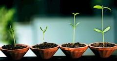 راه رسیدن به موفقیت این است: فعالیتهایی که اکنون انجام میدهید را با جدیت بیشتری دنبال کنید