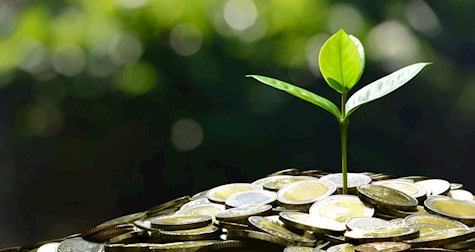 4 نکته برای رشد کسب و کار چند میلیارد دلاری بدون بدهی و سرمایهگذار