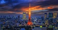 توکیو قلب تپنده ژاپن