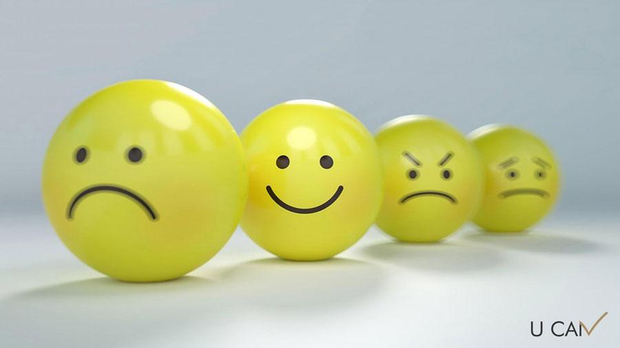 strategies of emotional regulation راهبردهای تنظیم هیجان