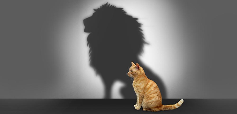 3 تمرین نوشتنی که اعتماد به نفس شما را افزایش میدهند