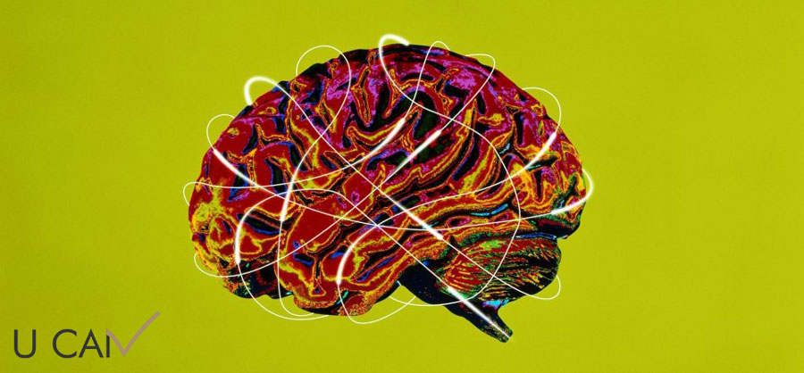 نظریات مختلف هوش دیدگاه عصبی زیستی هوش سیال هوش متبلور هوش A هوش B