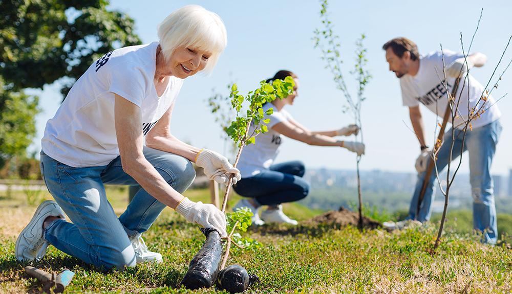 زندگی بهتر - محیط زیست - شهر ما  خانه ما