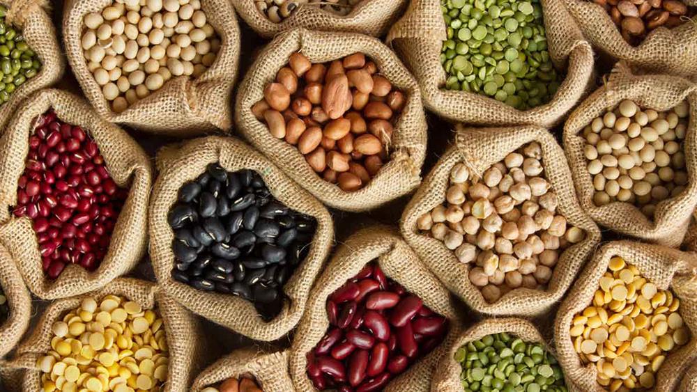 پروتئین - غذای سالم - رژیم غذایی مناسب
